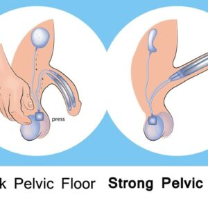pelvic floor exercises for men - Hardcore Erection -Erectile dysfunction cure at home - Do one thing