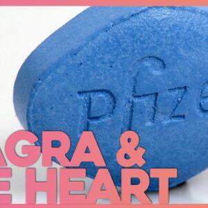 The Unexpected Link Between Erectile Dysfunction, Viagra & the Heart (ft Medlife Crisis) | Corporis